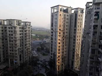 1518 sqft, 3 bhk Apartment in Space Silver Spring Tangra, Kolkata at Rs. 45000