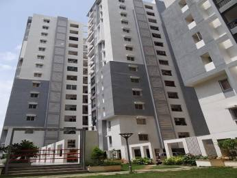 1580 sqft, 3 bhk Apartment in Cybercity Rainbow Vistas Rock Gardens Hitech City, Hyderabad at Rs. 30000