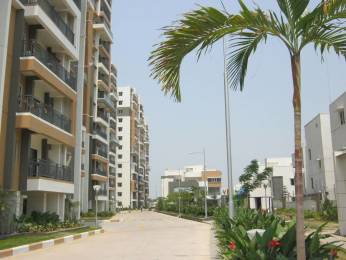 1340 sqft, 2 bhk Apartment in Aparna Hillpark Avenue Miyapur, Hyderabad at Rs. 22000