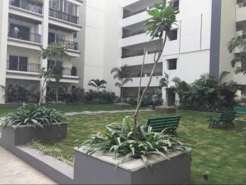 2610 sqft, 3 bhk Apartment in Vasavi Shanthinikethan Hitech City, Hyderabad at Rs. 43000