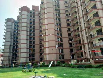 1050 sqft, 2 bhk Apartment in Builder RAIL VIHAR Sector 10, Sonepat at Rs. 6000