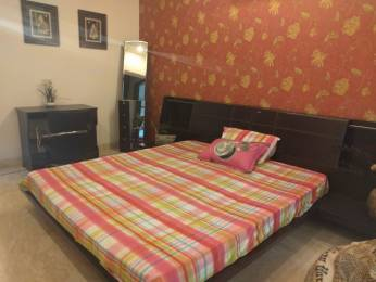 2600 sqft, 5 bhk Apartment in Builder Project Mohali Sec 65, Chandigarh at Rs. 80000