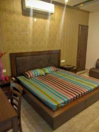 2400 sqft, 3 bhk Apartment in Builder Project Sector 37, Chandigarh at Rs. 50000