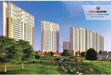 1230 sqft, 2 bhk Apartment in Hero Homes Gurgaon Sector 104, Gurgaon at Rs. 72.0000 Lacs
