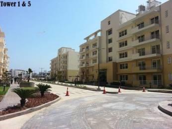 250 sqft, 1 bhk Apartment in CHD Avenue 71 Sector 71, Gurgaon at Rs. 8.0000 Lacs