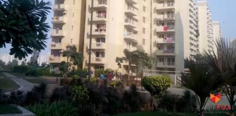 270 sqft, 1 bhk Apartment in TATA Primanti Sector 72, Gurgaon at Rs. 12.0000 Lacs