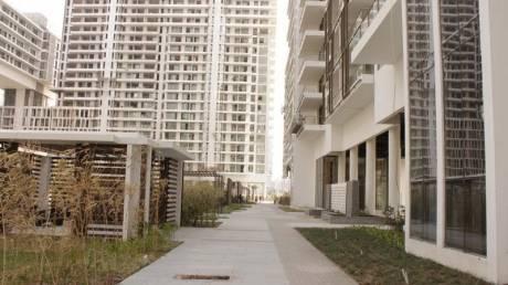 250 sqft, 1 bhk Apartment in Builder M3M Golf Estate Sector 65, Gurgaon at Rs. 7.0000 Lacs
