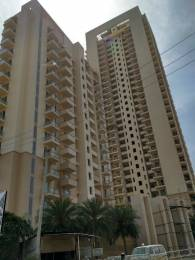 252 sqft, 1 bhk Apartment in Bestech Park View Ananda Sector 81, Gurgaon at Rs. 6.0000 Lacs