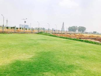 1206 sqft, Plot in Tdi Group Builders Villas Sector 117 Mohali, Mohali at Rs. 37.0000 Lacs