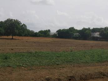 1503 sqft, Plot in Srika Western Bhanur, Hyderabad at Rs. 20.8750 Lacs