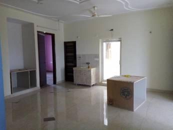 1950 sqft, 3 bhk Apartment in Mittal Cosmos Executive Apartment Ansals Palam Vihar, Gurgaon at Rs. 25200