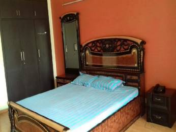 2050 sqft, 4 bhk Apartment in Maxworth Premier Urban Sector 15, Gurgaon at Rs. 36000