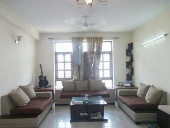 1900 sqft, 3 bhk BuilderFloor in Builder Project Sector 27, Gurgaon at Rs. 35000