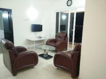 1100 sqft, 2 bhk Apartment in DLF Silver Oaks Sector 26 Gurgaon, Gurgaon at Rs. 29000