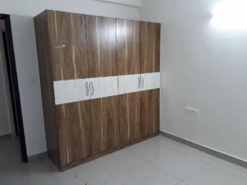 1700 sqft, 3 bhk Apartment in Tulip Tulip White Sector 69, Gurgaon at Rs. 16000
