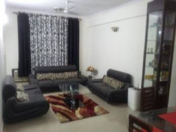 2303 sqft, 3 bhk Apartment in Alpha Gurgaon One 22 Sector 22 Gurgaon, Gurgaon at Rs. 40000