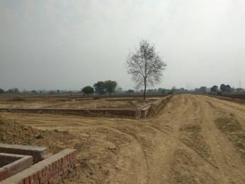 1000 sqft, Plot in Builder Pole star city sikatiya, Kanpur at Rs. 5.0000 Lacs