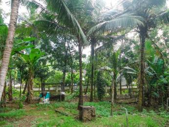 8708 sqft, Plot in Builder Project Valiakulam, Kottayam at Rs. 1.5000 Cr
