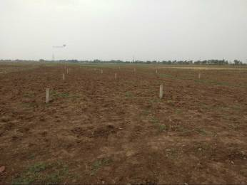 1200 sqft, Plot in Builder Radhekrishna socity Gopalpur Sabar Chak Road, Patna at Rs. 8.4000 Lacs