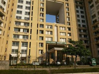 2640 sqft, 3 bhk Apartment in Jaypee The Kalypso Court Sector 128, Noida at Rs. 37000
