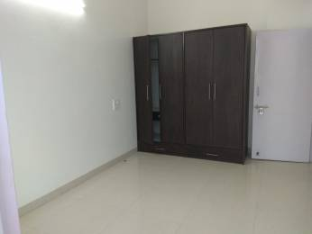 1100 sqft, 2 bhk Apartment in Builder Project sector 71, Mohali at Rs. 17000