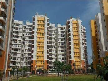 1336 sqft, 2 bhk Apartment in Olympia Grande Pallavaram, Chennai at Rs. 28000