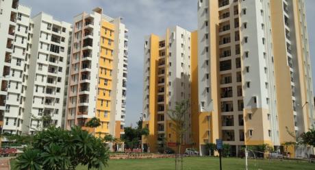 1632 sqft, 3 bhk Apartment in Olympia Grande Pallavaram, Chennai at Rs. 25000