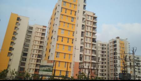 1152 sqft, 2 bhk Apartment in Olympia Grande Pallavaram, Chennai at Rs. 20000
