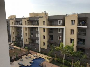 1750 sqft, 3 bhk Apartment in Ceebros Belvedere Sholinganallur, Chennai at Rs. 65000