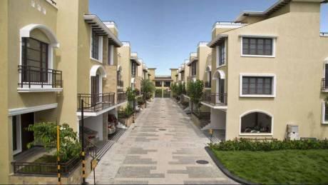 2467 sqft, 4 bhk Villa in Casagrand Pallagio Thoraipakkam OMR, Chennai at Rs. 45000