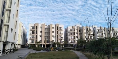 962 sqft, 2 bhk Apartment in Jain Alpine Meadows Pammal, Chennai at Rs. 13000