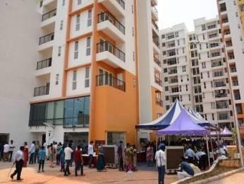650 sqft, 1 bhk Apartment in Olympia Grande Pallavaram, Chennai at Rs. 18500