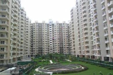 1100 sqft, 2 bhk Apartment in Builder Project Sector 137, Noida at Rs. 66.0000 Lacs