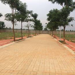 1200 sqft, Plot in Builder BIAAPA APPROVED VILLA PLOTS Devanhalli Road, Bangalore at Rs. 43.2000 Lacs