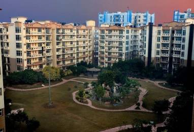 1650 sqft, 3 bhk Apartment in Gillco Towers Sector 127 Mohali, Mohali at Rs. 49.9000 Lacs