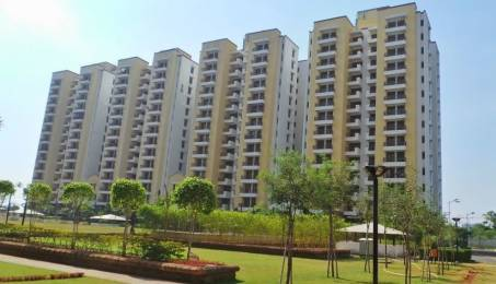 1362 sqft, 2 bhk Apartment in Vipul Gardens Shankarpur, Bhubaneswar at Rs. 59.0000 Lacs