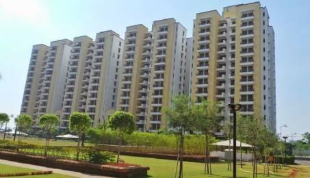 1393 sqft, 2 bhk Apartment in Vipul Gardens Shankarpur, Bhubaneswar at Rs. 58.0000 Lacs