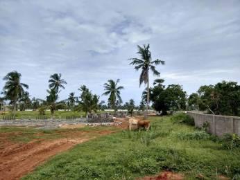 1440 sqft, Plot in Builder Beach View Vuda Gated Community Bheemunipatnam, Visakhapatnam at Rs. 14.4000 Lacs