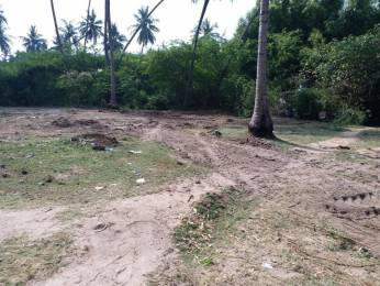 3600 sqft, Plot in Builder Project Thengaithittu, Pondicherry at Rs. 36.0000 Lacs