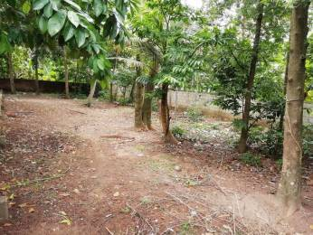 3702 sqft, Plot in Builder 8 5 Rectangular plot Paravur Town Road, Kollam at Rs. 25.0000 Lacs