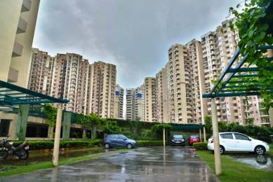 1045 sqft, 2 bhk Apartment in Paramount Floraville Sector 137, Noida at Rs. 53.0000 Lacs
