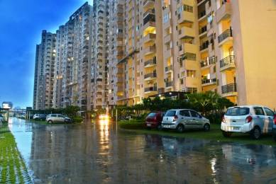 1045 sqft, 2 bhk Apartment in Paramount Floraville Sector 137, Noida at Rs. 58.0000 Lacs
