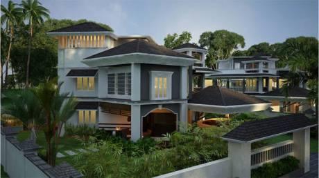 4900 sqft, 5 bhk Villa in Builder Project Thrippunithura, Kochi at Rs. 3.3000 Cr