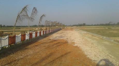 1000 sqft, Plot in Kanpur Properties Yog Galaxy Civil Lines, Kanpur at Rs. 6.5000 Lacs