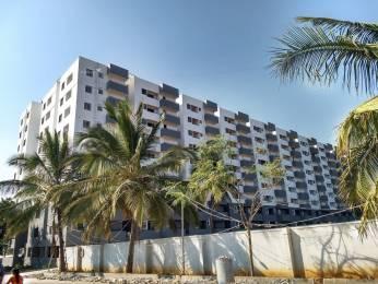 920 sqft, 3 bhk Apartment in Builder Aryan palm groves Marsur, Bangalore at Rs. 32.2000 Lacs
