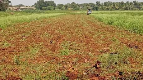 1200 sqft, Plot in Builder S B Park Navanagar, Hubli Dharwad at Rs. 10.1000 Lacs
