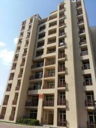 1875 sqft, 3 bhk Apartment in Ansal Orchard County Tulip and Carnation Sector 115 Mohali, Mohali at Rs. 60.0000 Lacs