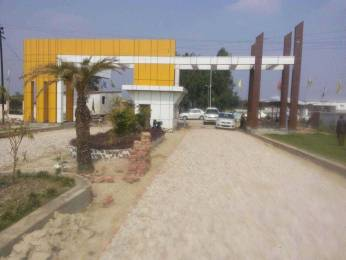 1000 sqft, Plot in Builder Acemy residency Masti Pur, Lucknow at Rs. 7.9900 Lacs