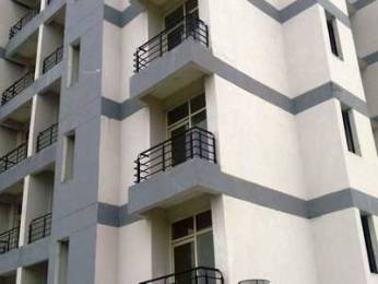 834 sqft, 1 bhk Apartment in Ansal Santushti Enclave Sushant Golf City, Lucknow at Rs. 29.0000 Lacs