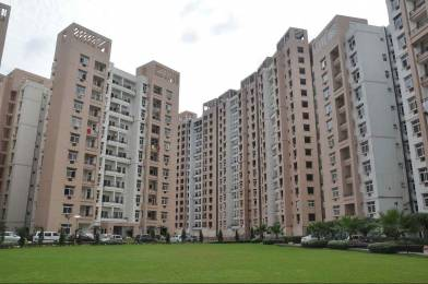 1675 sqft, 3 bhk Apartment in Rohtas Plumeria Gomti Nagar, Lucknow at Rs. 90.0000 Lacs